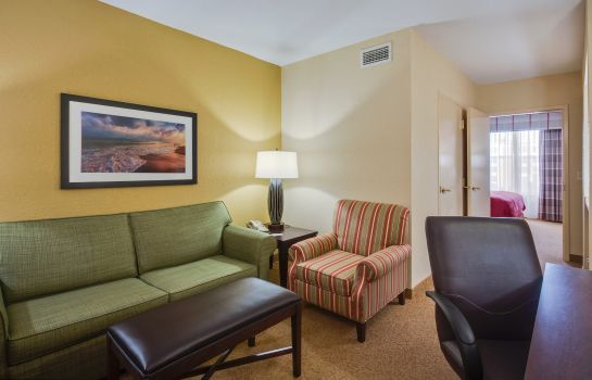 Suite Holiday Inn Express & Suites S LAKE BUENA VISTA