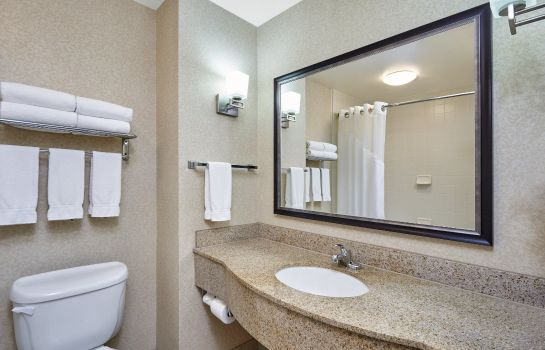 Info Holiday Inn Express & Suites GRAND RAPIDS - SOUTH