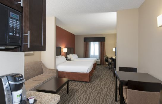 Room Holiday Inn Express & Suites GRAND RAPIDS-NORTH