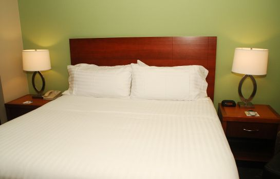 Room Holiday Inn Express & Suites BIRMINGHAM-IRONDALE (EAST)