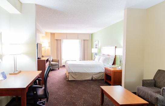 Zimmer Holiday Inn Express & Suites BIRMINGHAM-IRONDALE (EAST)
