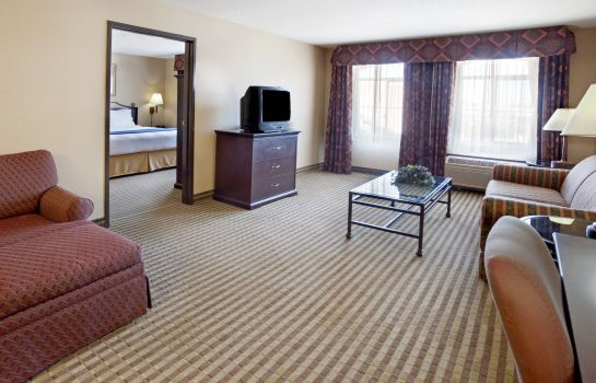 Suite Holiday Inn Express & Suites MARINA - STATE BEACH AREA
