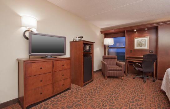 Suite Hampton Inn Grand Rapids-North