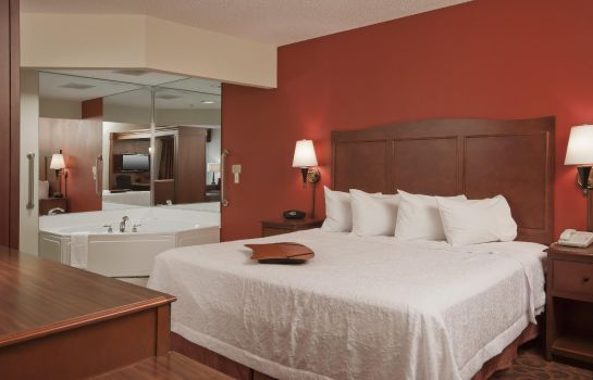 Zimmer Hampton Inn Grand Rapids-North