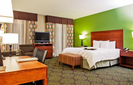 Suite Hampton Inn - Suites Harlingen