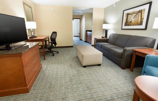 Habitación Drury Inn and Suites Grand Rapids