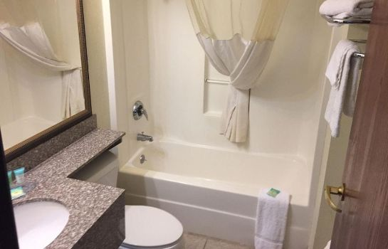 Cuarto de baño Owens College  Downtown Toledo BridgePointe Inn & Suites By Hollywood Casino