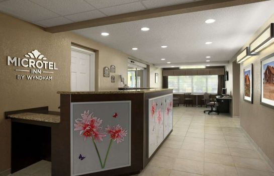Hotelhal MICROTEL INN & SUITES BY WYNDH