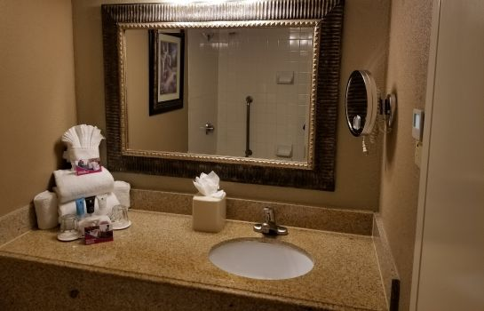 Zimmer Crowne Plaza HOUSTON NEAR RELIANT - MEDICAL