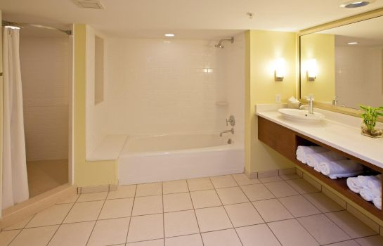 Zimmer Holiday Inn Express INDIANAPOLIS - FISHERS