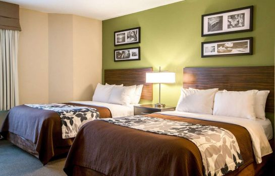 Double room (superior) Sleep Inn Douglasville