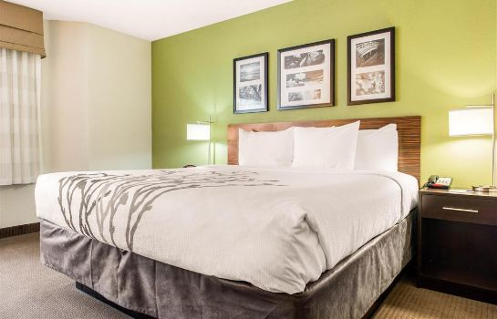 Chambre Sleep Inn and Suites