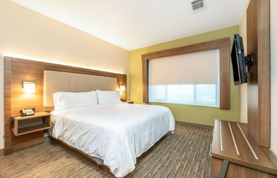 Suite Holiday Inn Express & Suites FREMONT - MILPITAS CENTRAL