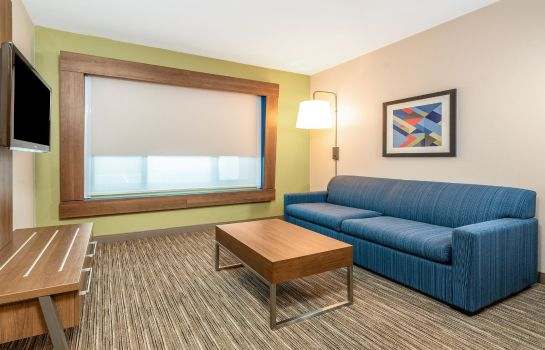 Information Holiday Inn Express & Suites FREMONT - MILPITAS CENTRAL