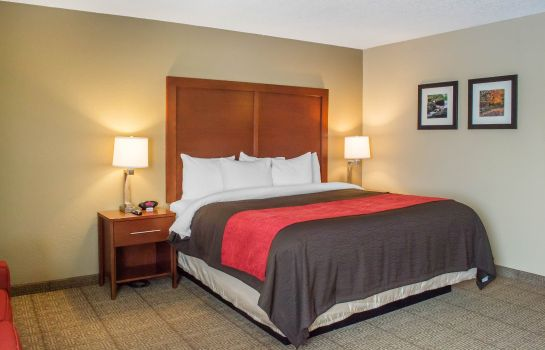 Kamers Comfort Inn Mayfield Heights Cleveland E