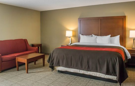 Room Comfort Inn Mayfield Heights Cleveland East