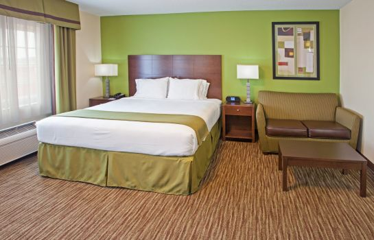Zimmer Holiday Inn Express BOWLING GREEN