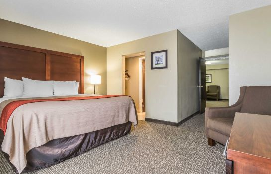 Suite Comfort Inn & Suites Lexington