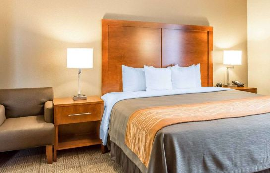 Suite Comfort Inn North/Polaris