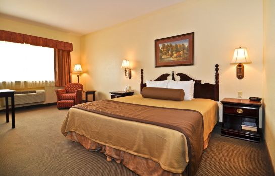 Zimmer BEST WESTERN PLUS SAM HOUSTON