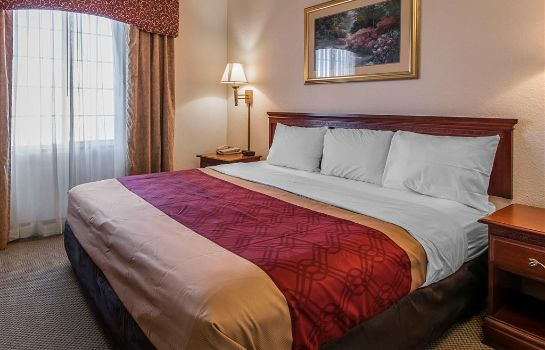 Zimmer Econo Lodge Inn and Suites Marianna