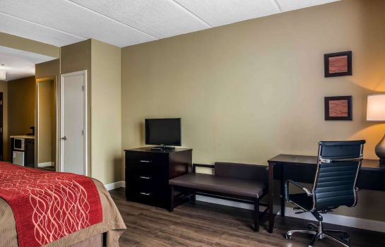 Zimmer Comfort Inn & Suites near Six Flags