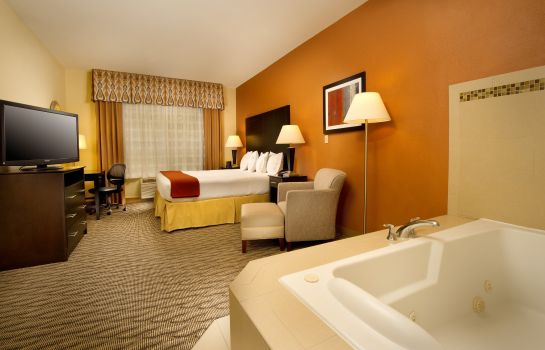 Suite Holiday Inn Express & Suites MANASSAS