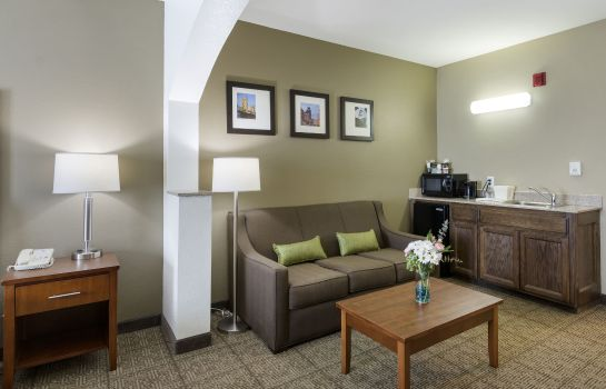 Suite Comfort Inn & Suites Sacramento - University Area