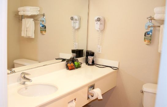 Cuarto de baño Lamplighter Inn & Suites