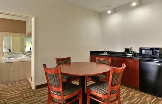 Suite Comfort Inn & Suites University South