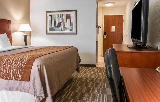 Chambre Comfort Inn and Suites University South