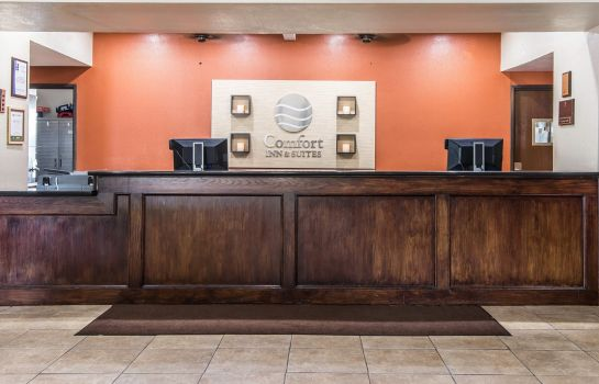 Lobby Comfort Inn and Suites Kansas City Downt