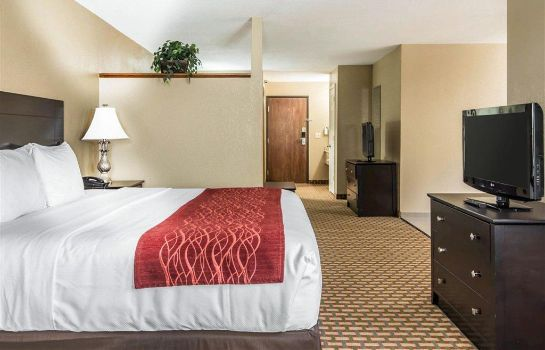 Suite Comfort Inn and Suites Kansas City Downt