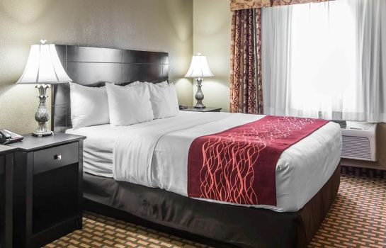 Room Comfort Inn and Suites Kansas City Downt