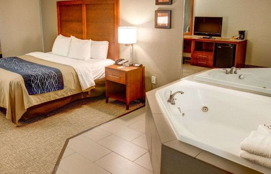 Suite Comfort Inn Conference Center