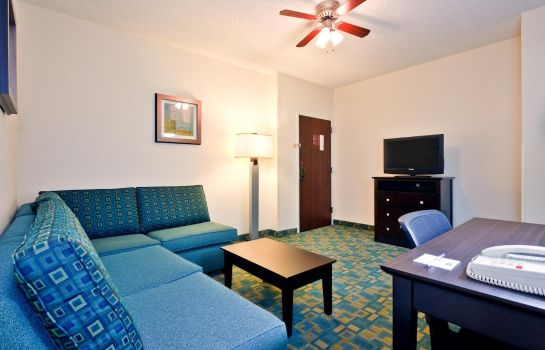Suite Holiday Inn Express & Suites BRENTWOOD NORTH-NASHVILLE AREA