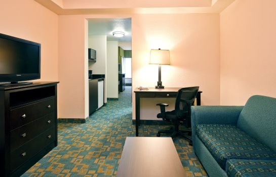 Room Holiday Inn Express & Suites BRENTWOOD NORTH-NASHVILLE AREA
