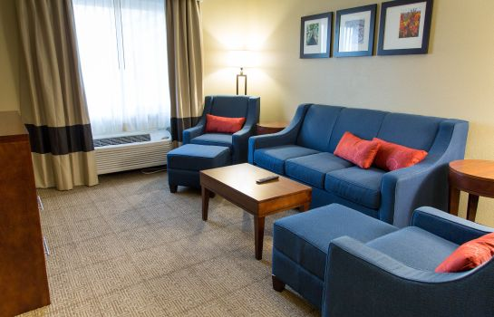 Suite Comfort Inn DFW Airport North
