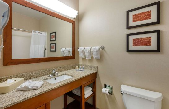 Room Comfort Inn DFW Airport North Comfort Inn DFW Airport North