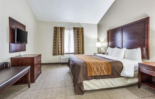 Suite Comfort Inn and Suites Love Field-Dallas