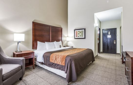 Room Comfort Inn & Suites Love Field-Dallas Market Center