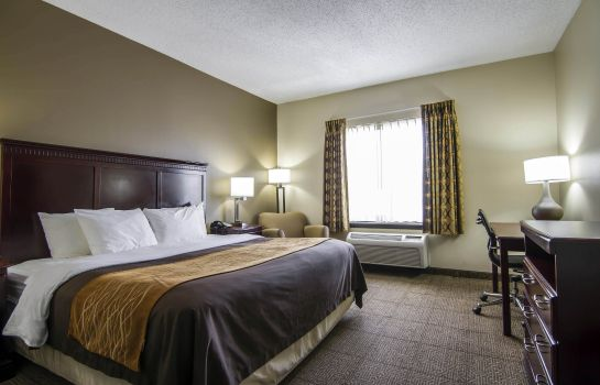 Zimmer Comfort Inn and Suites Love Field-Dallas