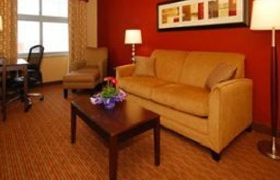 Suite Holiday Inn Express & Suites BUFFALO DOWNTOWN