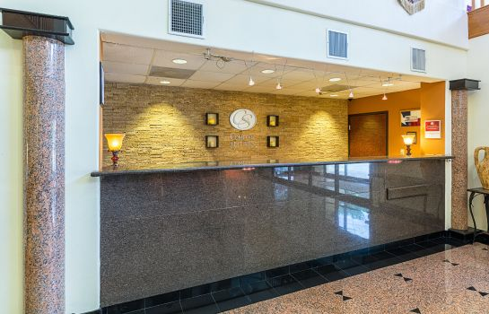 Hotelhalle Comfort Suites near Texas Medical Center - NRG Stadium
