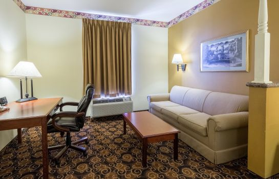 Zimmer Comfort Suites near Texas Medical Center - NRG Stadium