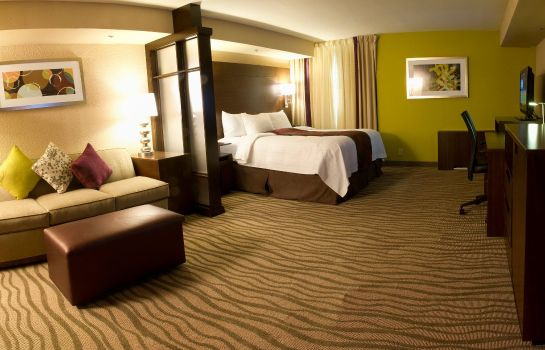 Zimmer Fairfield Inn & Suites Dallas DFW Airport South/Irving