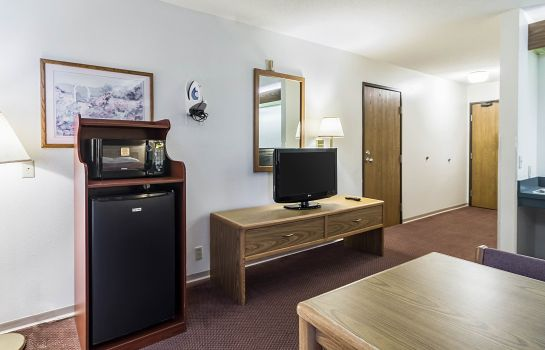 Suite Econo Lodge Ortonville