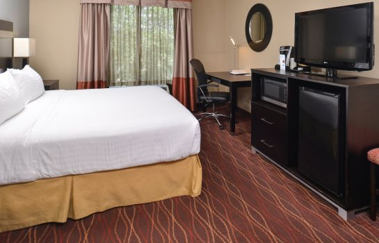 Zimmer Holiday Inn Express & Suites AUSTIN SW - SUNSET VALLEY