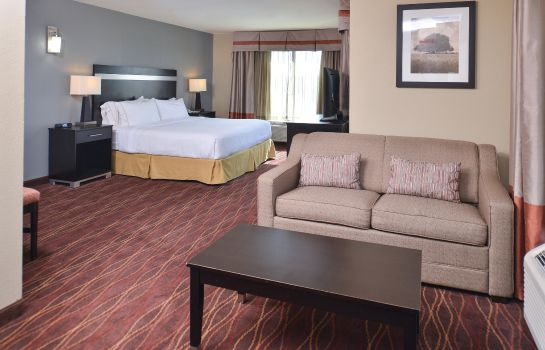 Kamers Holiday Inn Express & Suites AUSTIN SW - SUNSET VALLEY