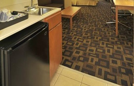 Suite Holiday Inn Express & Suites AUSTIN NW - LAKELINE